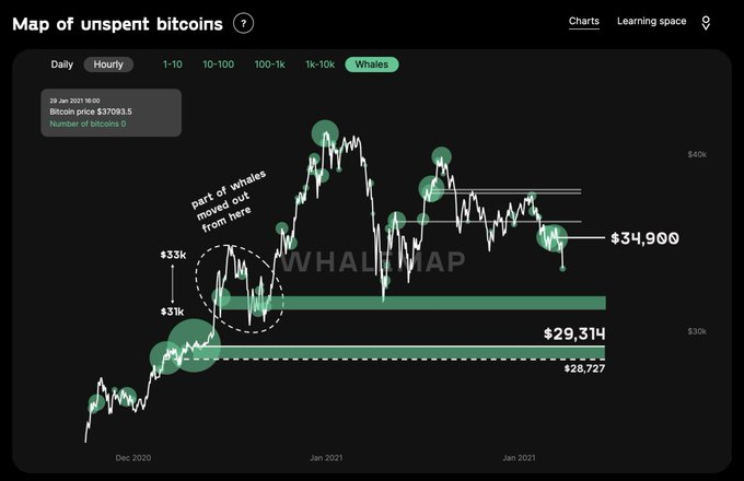 Bitcoin whales are moving funds fast, what's next